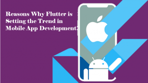 Why Flutter is the best platform to develop a hybrid mobile application